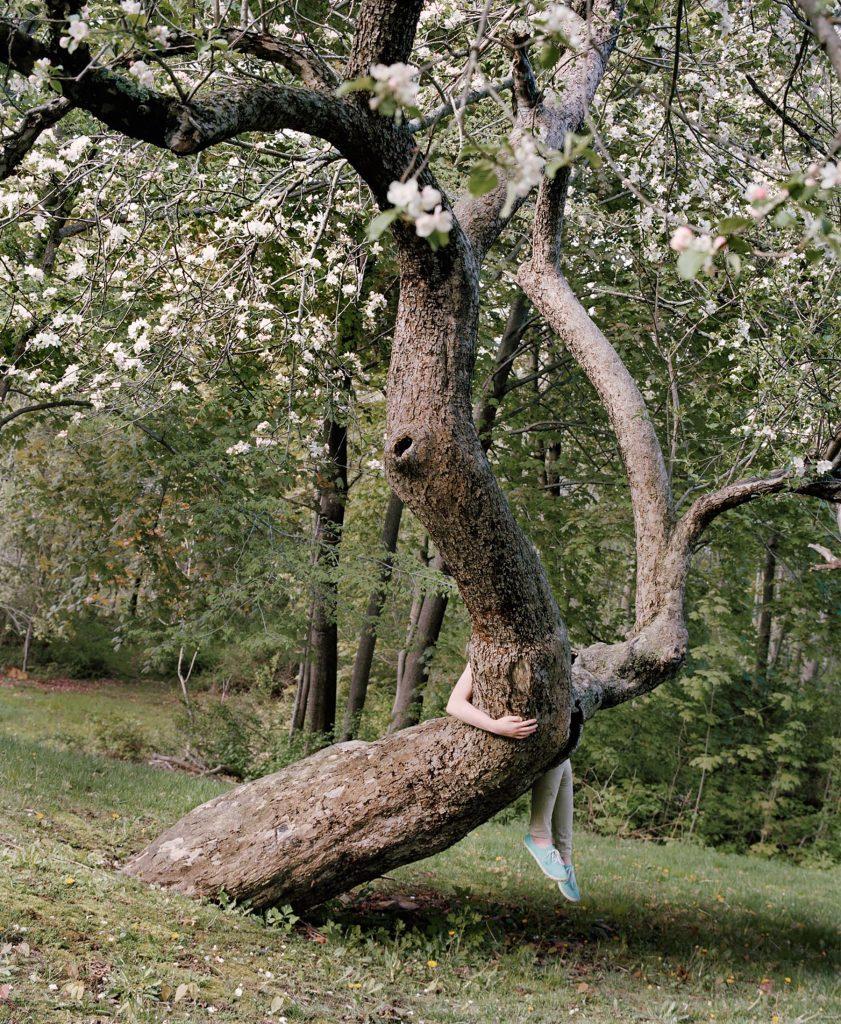 The Appearance of Things- vita e morte nelle foto di Jocelyn Lee | Collater.al 1