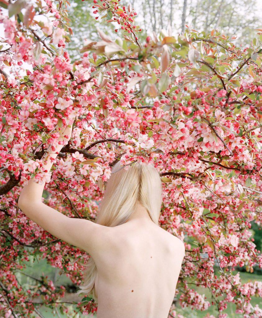 The Appearance of Things- vita e morte nelle foto di Jocelyn Lee | Collater.al 2