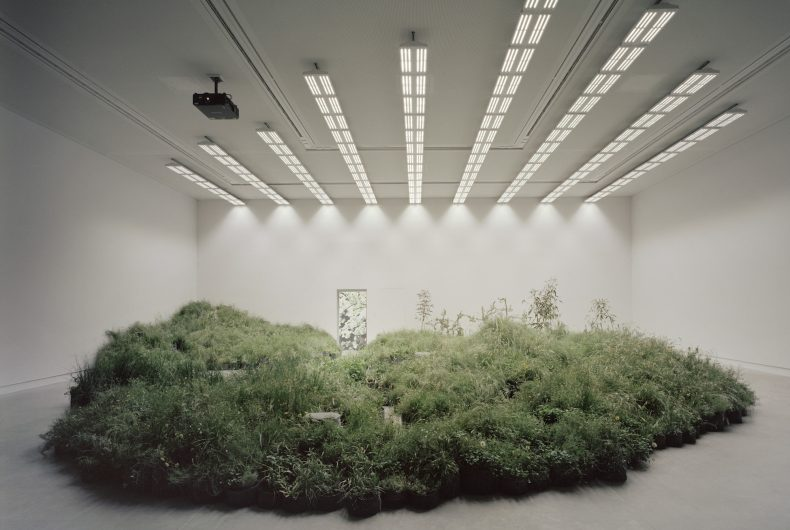Grasslands Repair is a spectacular installation by Linda Tegg
