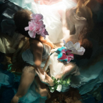Le fotografie subacquee che sembrano quadri di Christy Lee Rogers | Collater.al 11