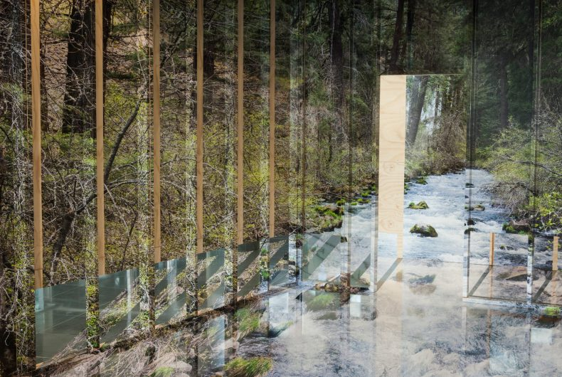 Chris Engman's three-dimensional installation takes us into the woods
