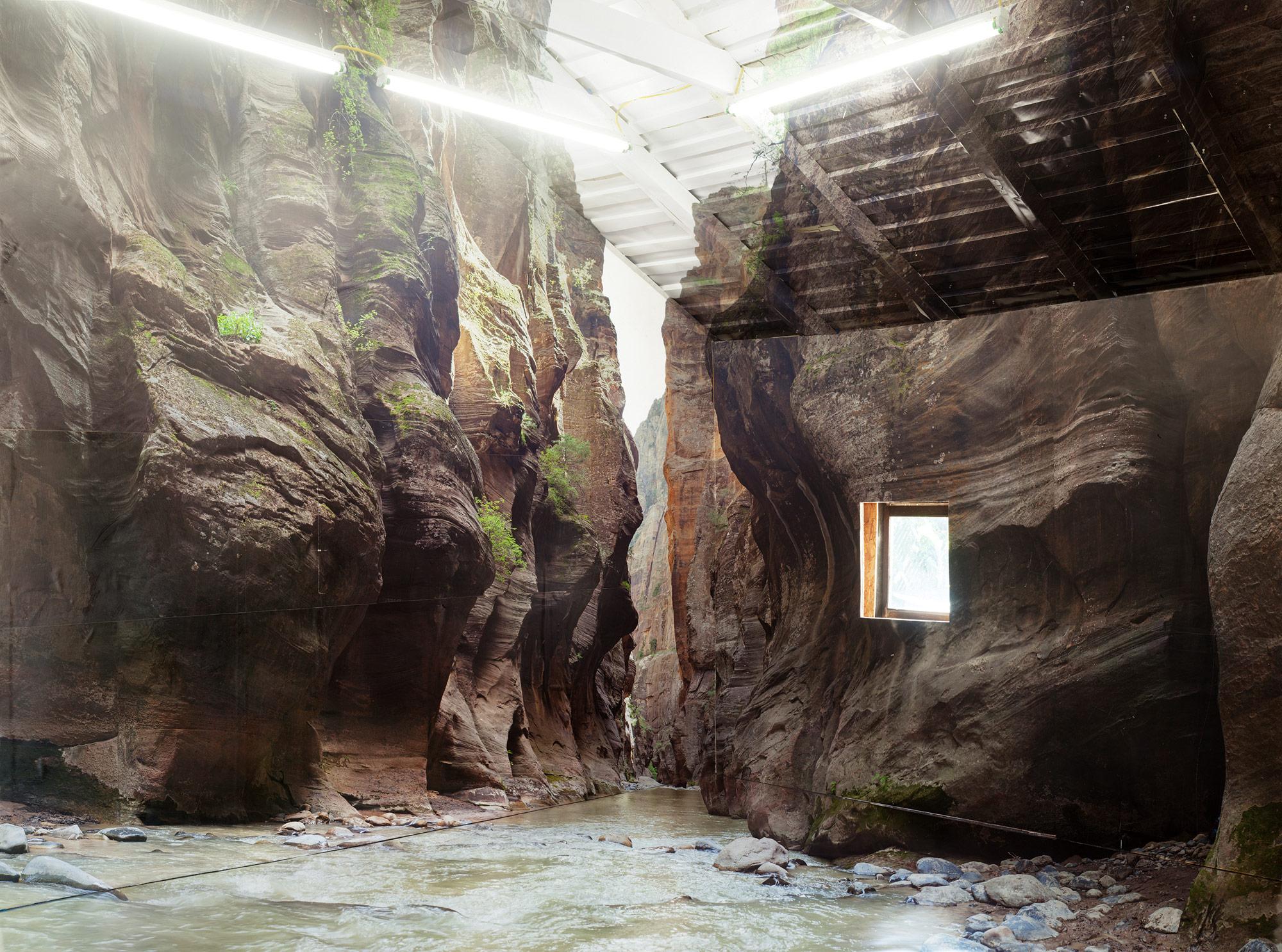 L'installazione tridimensionale di Chris Engman ci porta nel bosco   Collater.al