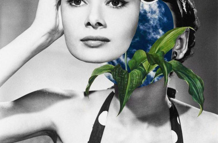 Luciana Aranha e i suoi folli collage pop-floreali