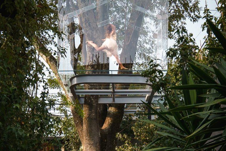 Chantli Kuaulakoyokan, la casa trasparente costruita sull'albero