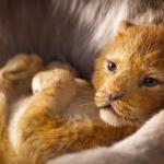Il Re Leone, primo trailer | Collater.al 2