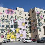 Ouizi trasforma palazzi grigi in giardini in fiore | Collater.al