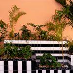 Le geometrie audaci di Camille Walala a Mauritius | Collater.alLe geometrie audaci di Camille Walala a Mauritius | Collater.al 16