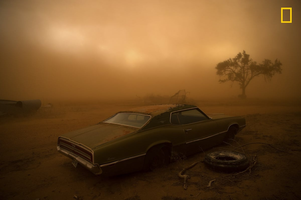 National Geographic Photo Contest | Collater.al