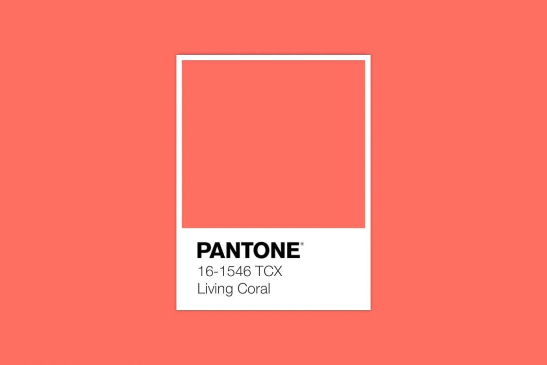 Pantone Living Coral Color of the Year 2019   Collater.al 9c