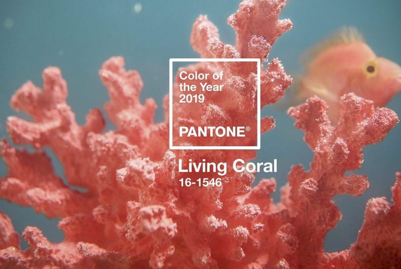 Pantone announced the Color of the Year 2019: Living Coral