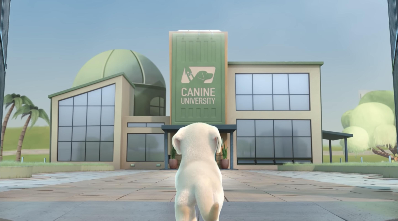 pip southeastern dogs guide | Collater.al