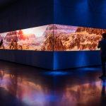 Asteria, installazioni immersive alla Dolby Galley | Collater.al 9
