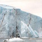 Derivé, il progetto di Hugo Livet che indaga la natura | Collater.al 10