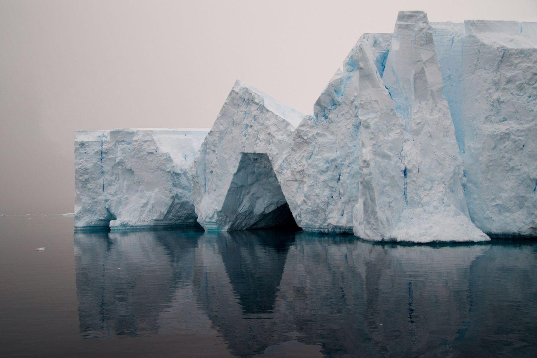 Derivé, il progetto di Hugo Livet che indaga la natura | Collater.al