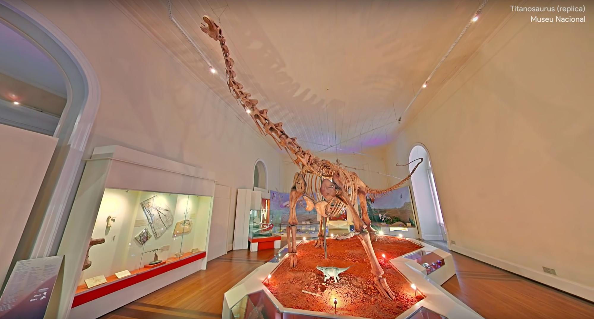 Insdie Brazils Museu Nacional Google Museum View | Collater.al