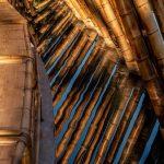 bamboo pavilion zuo | Collater.al 9e