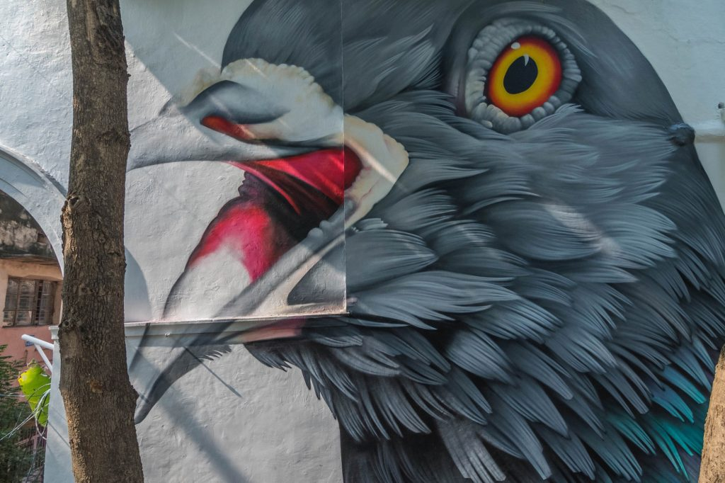 Adele Renault, street art iperrealista a Delhi | Collater.al