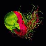 Jim Skull realizza sculture con fili e perline   Collater.al 3