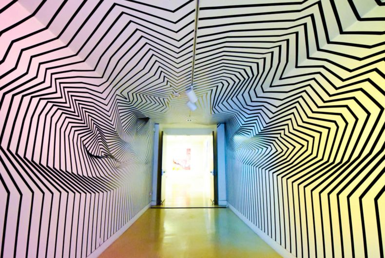 Darel Carey and his immersive installations