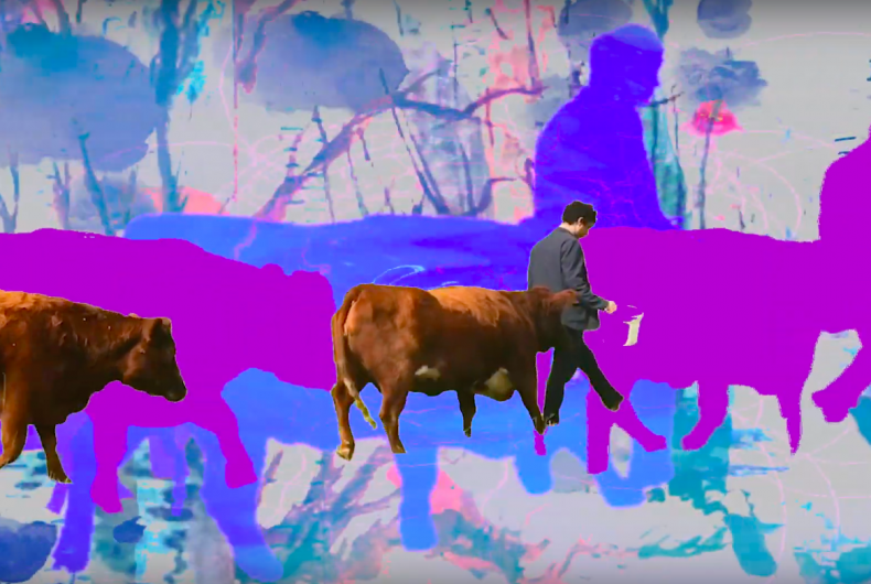 10 videos you need in your life this week