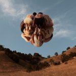 Rob Woodcox sfida la forza di gravità nelle sue immagini | Collater.al 6