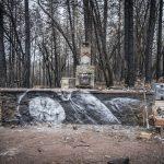 Shane Grammer, la street art che nasce dalle ceneri | Collater.al 6