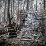 Shane Grammer, la street art che nasce dalle ceneri | Collater.al 7
