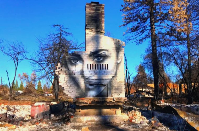 Shane Grammer, when street art born from the ashes