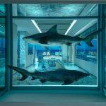 Damien Hirst e il Palms Casino Resort- tra squali e farfalle | Collater.al