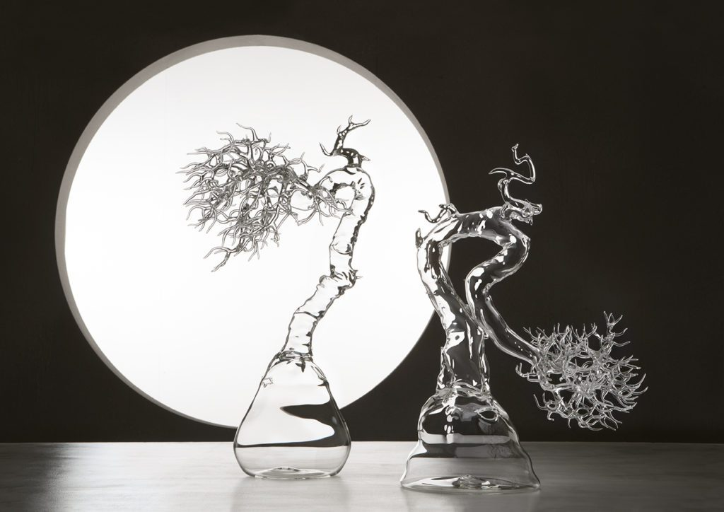 Glass Bonsai | Collater.al