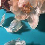 I poetici scatti still life floreali di Doan Ly | Collater.al 11