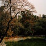 Mexico City, Joe Perri cattura le atmosfere del Messico | Collater.al 27