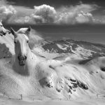 Thomas Barbey | Collater.al 9n