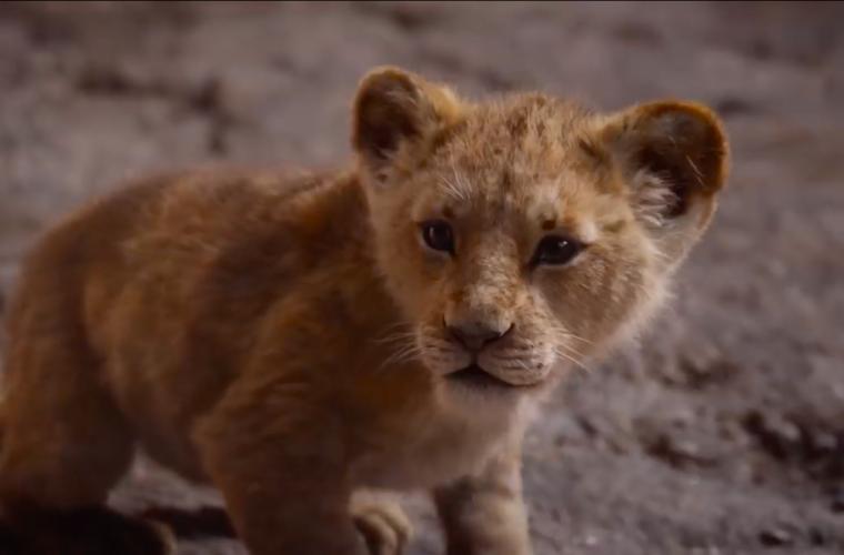 È arrivato! Ecco il trailer ufficiale de Il Re Leone!