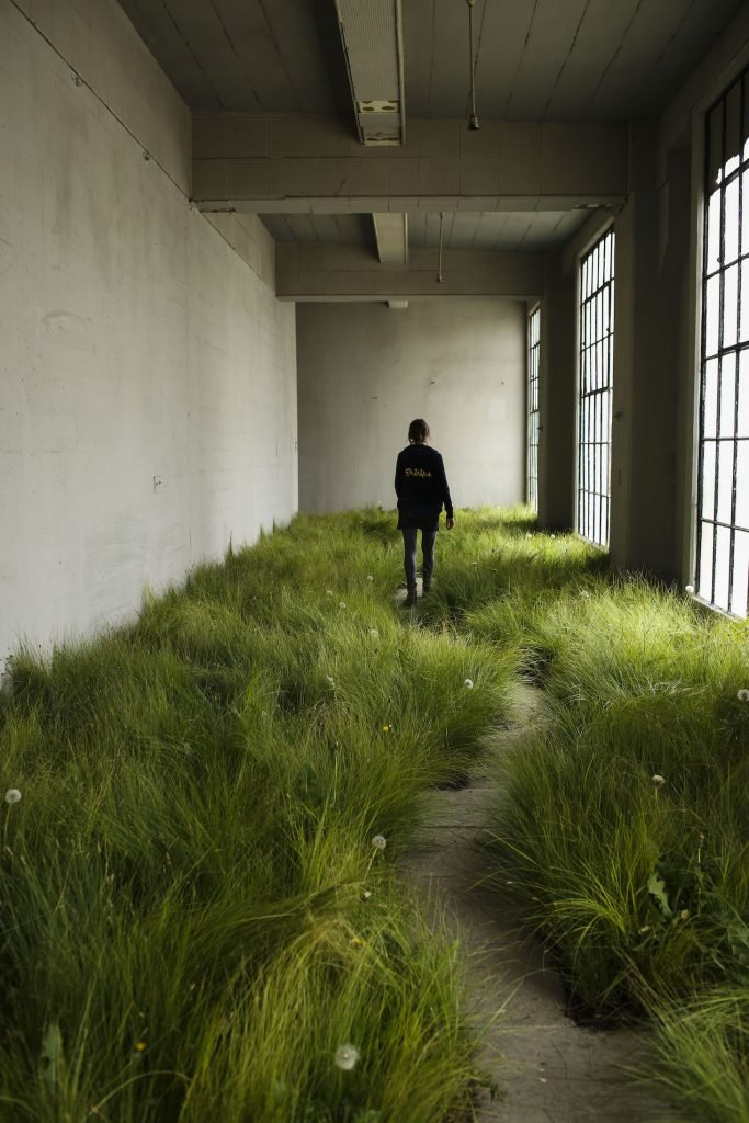 Dandelions, l'installazione floreale ha invaso Commerce | Collater.al