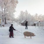 #Draft, il libro fotografico di Dmitry Markov   Collater.al 1