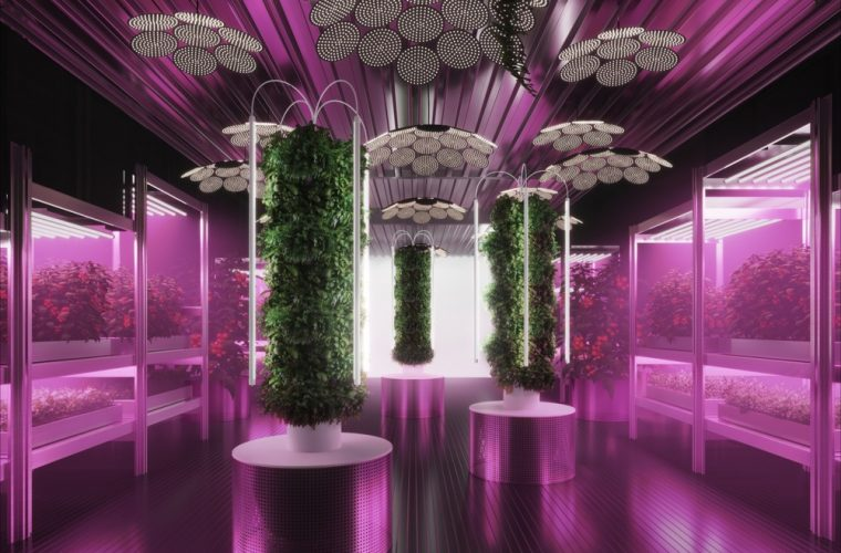 Gardening Will Save the World, urban agriculture is the focus of Tom Dixon and Ikea's project