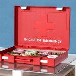 In Case of Emergency Ben Fearnley | Collater.al 8
