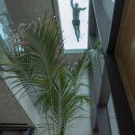 La casa moderna con piscina firmara Architrend Architecture | Collater.al 4