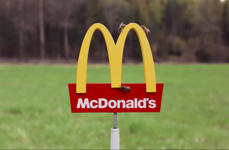 The world' s smallest McDonald's has opened and it's called McHive