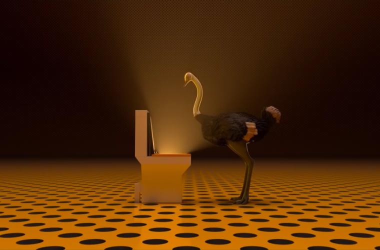 The Ostrich politic, far finta di niente non è mai la scelta giusta