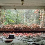 David McMillan chernobyl | Collater.al 9e
