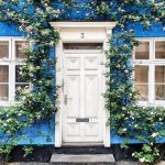 bella foxwell thedoorsoflnd | Collater.al 4