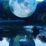 museum of the moon | Collater.al 5