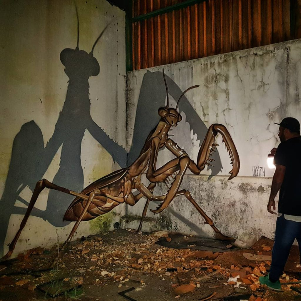 odeith | Collater.al 2
