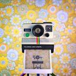 Camera-Selfies-le-macchine-fotografiche-si-fanno-un-selfie-Collater.al_-1