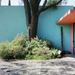 Casa-Pedregal-la-residenza-progettata-da-Luis-Barragàn-Collater.al-7