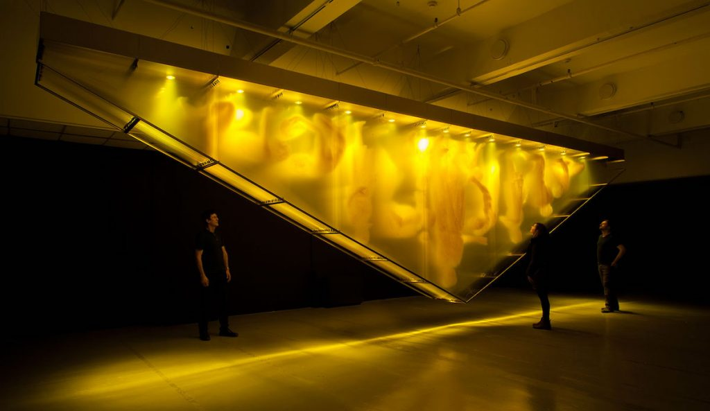 David Spriggs, installazioni 3D su larga scala | Collater.al