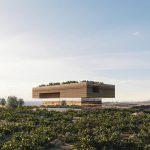 Kapsimalis-Architects-e-la-casa-da-sogno-in-un-vecchio-vigneto-Collater.al-7