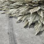 Loose-Leaf-Studio-l'installazione-botanica-in-un-ex-stazione-di-servizio-Collater.al-5